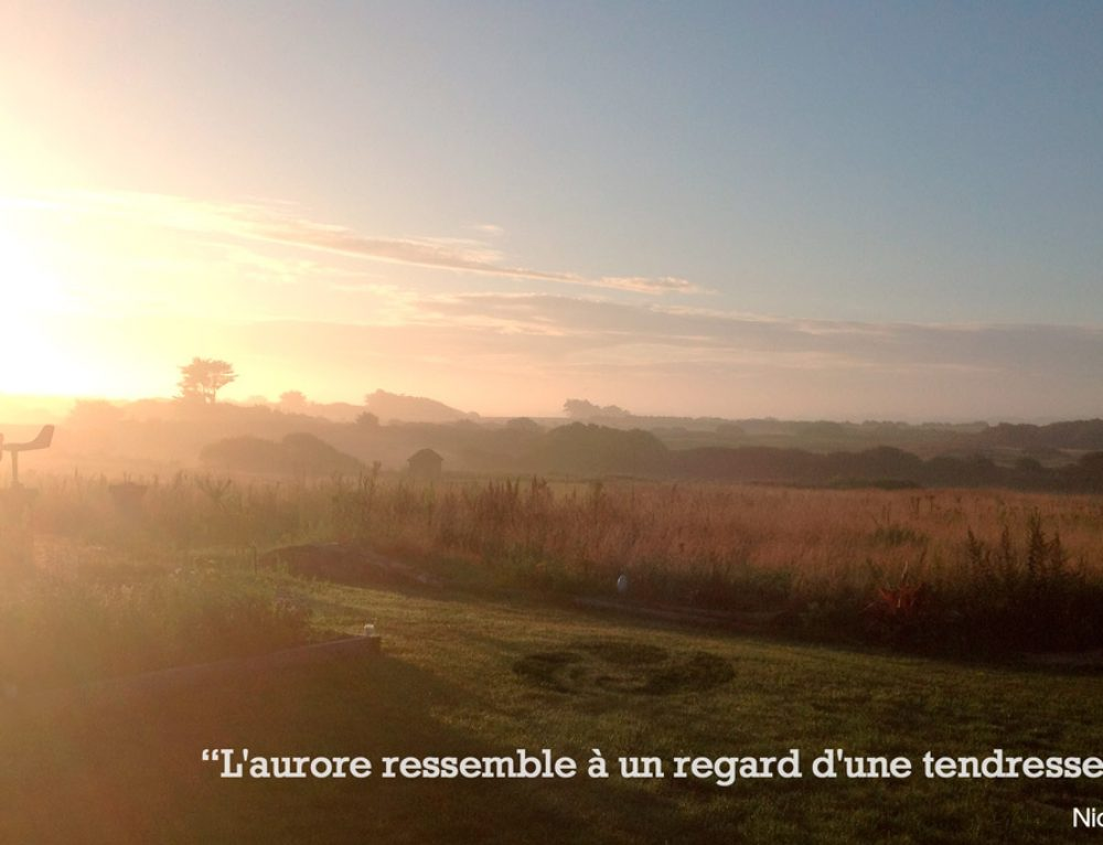 Citation – L'aurore ressemble à un regard d'une tendresse infinie