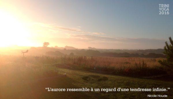 Citation TriniYoga - Bretagne - Aurore, soleil levant sur les champs