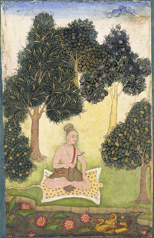 Yogi dans la nature Padmasana