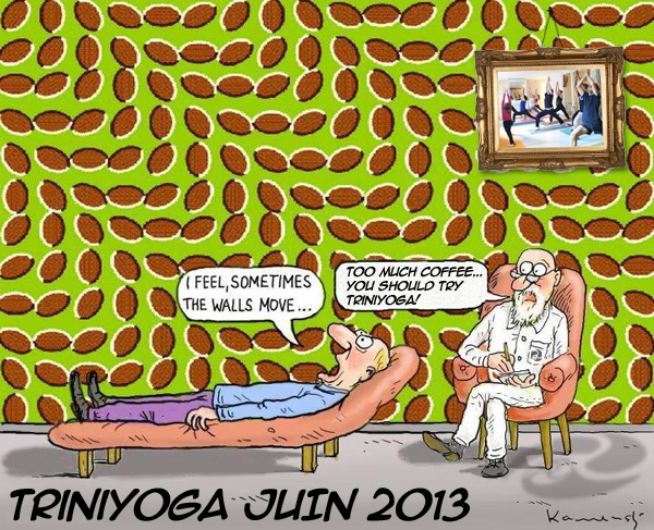 Illusion d'optique - citation - Trini Yoga newsletter juin 2013